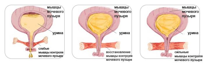 pyat-muzhikov-lizhut-u-devushki-klitor